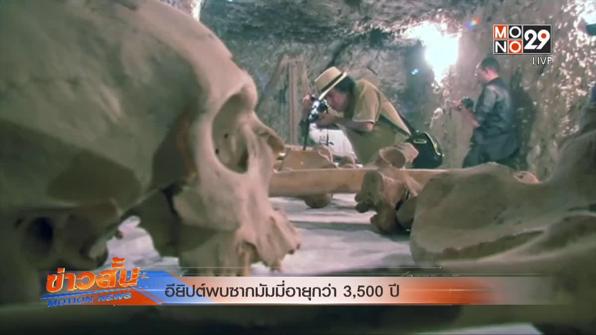 อียิปต์พบซากมัมมี่อายุกว่า 3,500 ปี
