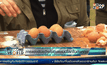การแข่งขันขว้างไข่ในอังกฤษ