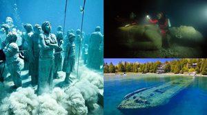 สิ่งมหัศจรรย์แห่งโลกใต้น้ำ ที่คุณเห็นแล้วต้องร้องว้าว