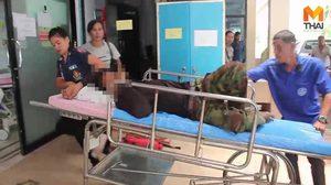 หาม 3 หนุ่ม ส่งโรงพยาบาล หลังกินเห็ดมีพิษแพ้รุนแรง