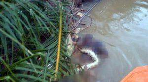 มีเงื่อนงำ! พบศพหนุ่มลอยกลางแม่น้ำ มีซากงูพันรอบตัว