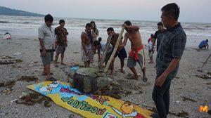 เหยื่อขยะพลาสติกในทะเล เต่าตนุยักษ์ตาย พบในปากมีเศษพลาสติกติดอยู่