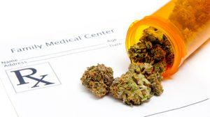 แปลกแต่จริง กัญชารักษาอาการอยากยา บำบัดอาการเสพติดเฮโรอีนได้