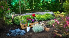 4 เทคนิค จัดสวน ที่บ้านแบบง่ายๆที่ใครๆก็ทำได้