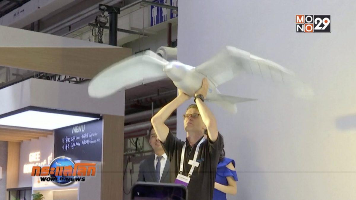 จีนพัฒนาหุ่นยนต์นก