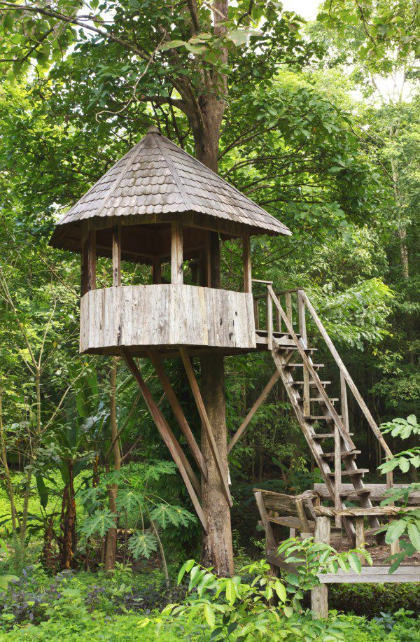 Cute wooden tree house for kids in tropical forest