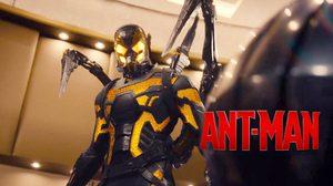 Ant-Man มนุษย์มดมหากาฬฮีโร่อีกหนึ่งตัวจากค่าย Marvel!!