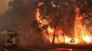 ไฟป่าออสเตรเลียรุนแรงยิ่งขึ้น