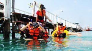 เรื่องน่ารู้ เตรียมตัวไปดำน้ำ ดูปะการัง น้ำตื้น