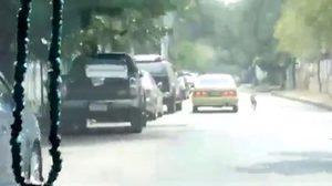 เศร้า! เจ้าตูบวิ่งไล่ตามรถสุดกำลัง หลังโดนเจ้าของปล่อยทิ้ง