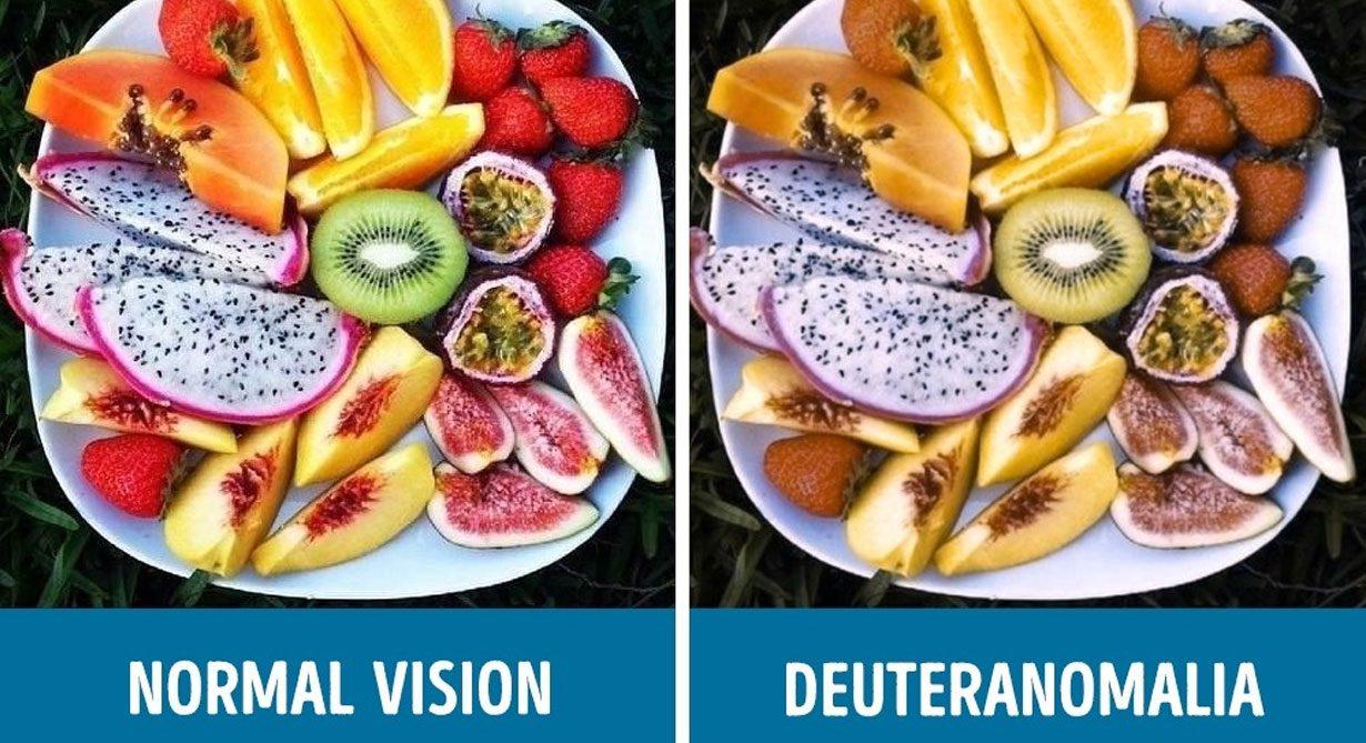 มาชมภาพเปรียบเทียบ คนตาบอดสี มองเห็นโลกเป็นแบบไหนกัน??