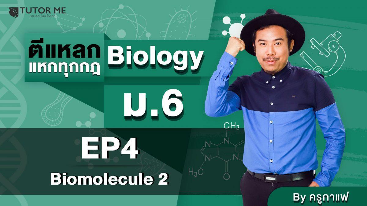 EP 4 Biomolecule 2