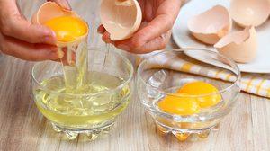 นักวิจัยชี้ กินไข่มากกว่า 3 ฟองต่อสัปดาห์ มีความเสี่ยงสูงเป็นโรคหัวใจ