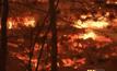 ไฟไหม้ป่าในสหรัฐฯ