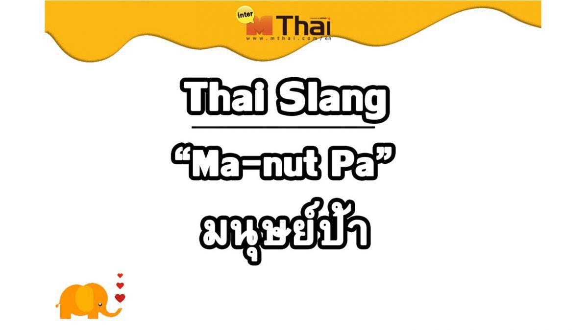 Thai Slang: Ma-nut Pa มนุษย์ป้า