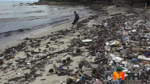 ขยะเกลื่อนชายหาดเกาะสมุย ส่งกลิ่นเหม็นจนนักท่องเที่ยวไม่กล้าลงเล่นน้ำ