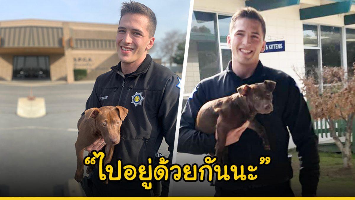 คุณตำรวจหนุ่มหล่อ เข้าช่วยลูกหมาที่ถูกเจ้านายทำร้าย ก่อนจะถูกชะตาของรับเลี้ยงเองซะเลย