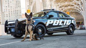 Ford เปิดตัวรถตำรวจ ระบบไฮบริด ใช้ครั้งแรกที่แอลเอ และนิวยอร์ค