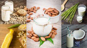 5 นมจากพืช มีประโยชน์เน้นๆ ช่วยบำรุงสุขภาพ ได้ไม่แพ้นมวัว!!