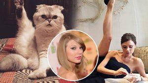 ใครเฟียซกว่ากัน! แมว เทย์เลอร์ สวิฟต์ โพสท่าเดียวกับ วิคตอเรีย เบ็คแฮม