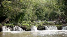 ร.10 โปรดเกล้าฯ พื้นที่ 'ป่าทับกวาง-มวกเหล็ก-ดงพญาเย็น' เป็นอุทยานเเห่งชาติ