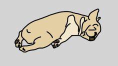 ท่านอนน้องหมา ทำนายนิสัยหมาได้