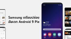 ชาว Samsung เฮ!! เผยเวลาอัพเดท Android 9 Pie อุปกรณ์ทุกรุ่น S8 และ Note8 จะมาในเดือนมีนาคมนี้