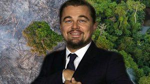 พระเอกรักษ์โลก ลีโอนาร์โด ดิคาปรีโอ ควักเงินสนับสนุน ระงับไฟป่าแอมะซอน