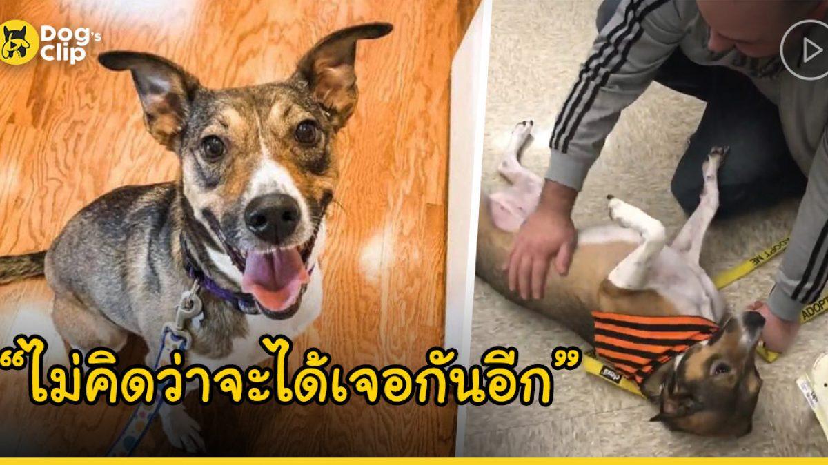 โฆษณาบนเฟซบุ๊กทำให้ชายหนุ่มได้เจอกับน้องหมาที่ไม่คิดว่าจะได้เจออีกครั้ง