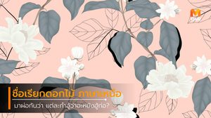 ชื่อเรียกดอกไม้ ภาษาเหนือ