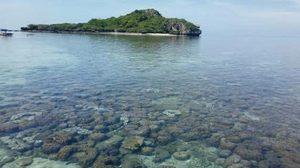 เปิดให้ท่องเที่ยวดำน้ำดูปะการังน้ำตื้นรอบเกาะจาน-เกาะท้ายทรีย์