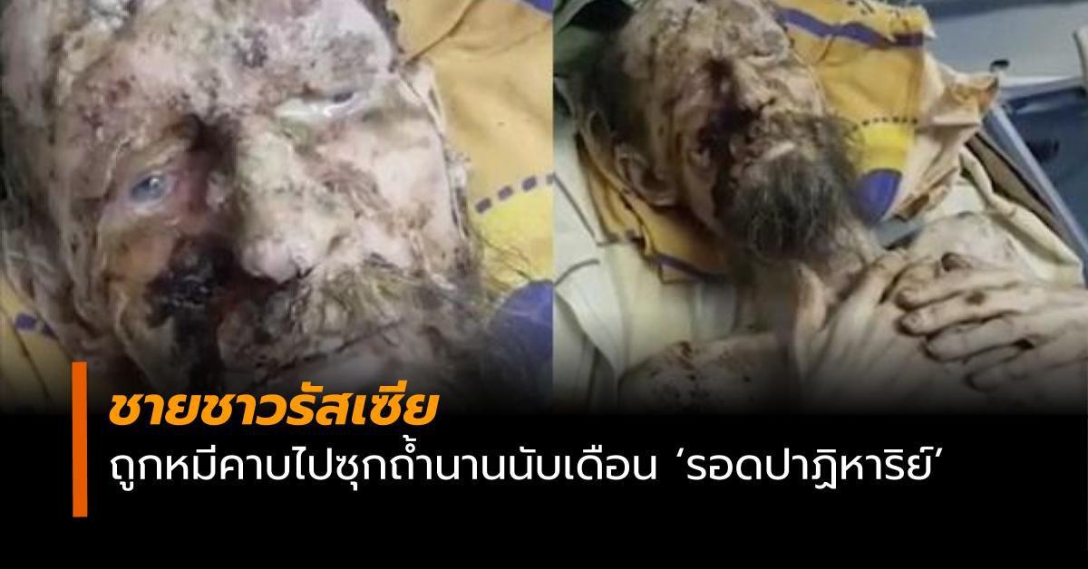 ชายชาวรัสเซียถูกหมีคาบไปซุกถ้ำนานนับเดือน 'รอดปาฏิหาริย์'