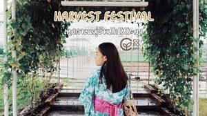 สวมชุดยูกะตะ เที่ยวเทศกาลหมู่บ้านโคโรโระคุง ที่ โคโรฟิลด์ (Coro field) จ.ราชบุรี
