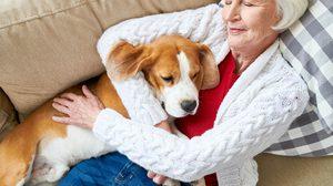 นอนกลางวัน นี่อาจเป็นสัญญาณเริ่มต้นของ โรคอัลไซเมอร์