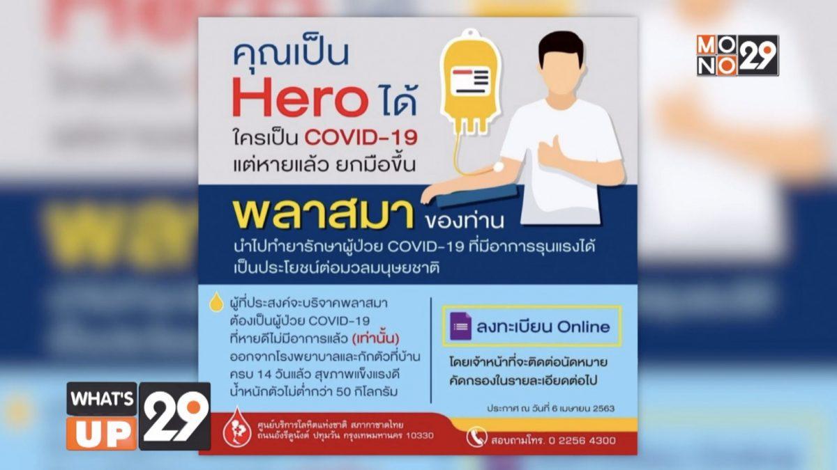 สภากาชาดไทย ขอรับบริจาคพลาสมา จากผู้ป่วยโควิด-19 ที่หายแล้ว