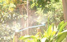 ฉีดพ่นละอองน้ำคลายร้อนให้สัตว์ป่า