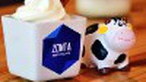 Zonta Dairy Village ร้านกาแฟแต่ทีเด็ดอยู่ที่นมสด