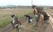 ยอดตายน้ำท่วมญี่ปุ่นแตะ 200 ห่วงเกิดโรคระบาด