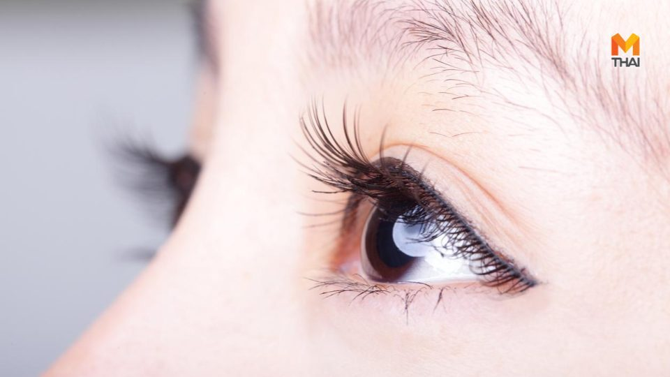 7 ทริคบำรุงขนตา ให้ยาวสวยอย่างเป็นธรรมชาติ โดยไม่ต้องง้อขนตาปลอม