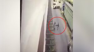 เด้ง 3 เสือสำโรงเหนือ เซ่นอาสาตำรวจถีบรถจยย.หนีด่าน จนพลาดล้มเสียชีวิต