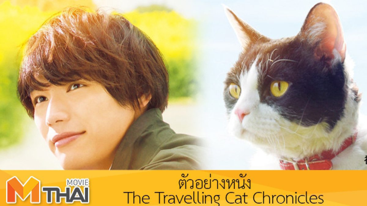 ฟุคุชิ โซตะ พาน้องแมวนานะ มาทักทายแฟน ๆ ในวันแมวสากล #TheTravellingCatChronicles