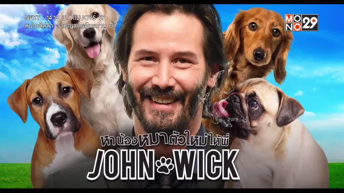 เคาะจอจ้อหนัง หาน้องหมาตัวใหม่ให้พี่ JOHN WICK
