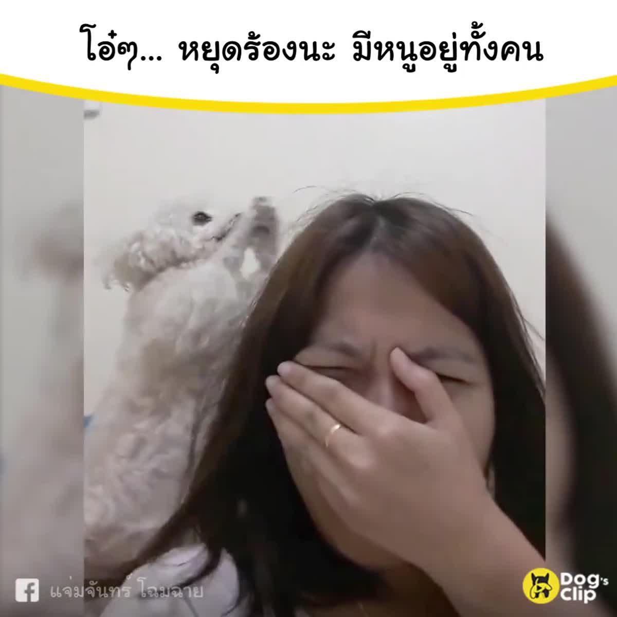 แม่จ๋าอย่าร้องไห้เลยยยย มีหนูอยู่ข้างๆเสมอนะ
