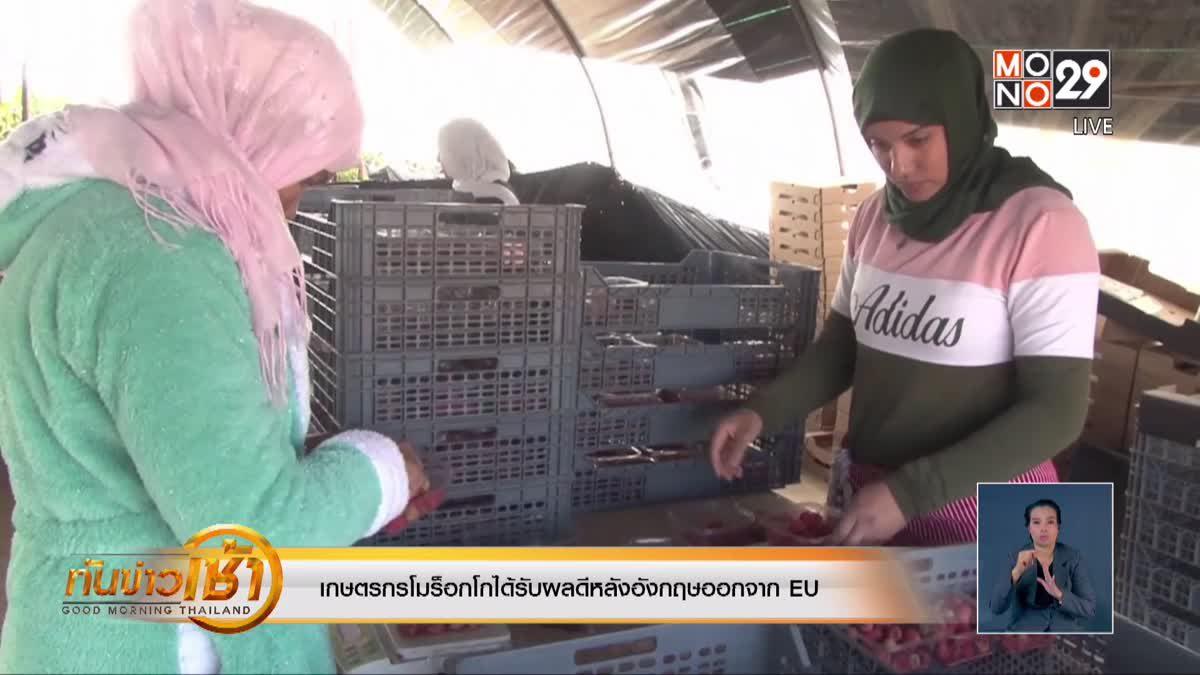 เกษตรกรโมร็อกโกได้รับผลดีหลังอังกฤษออกจาก EU