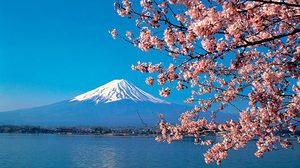 ทุนรัฐบาลญี่ปุ่น ประจำปี 2561