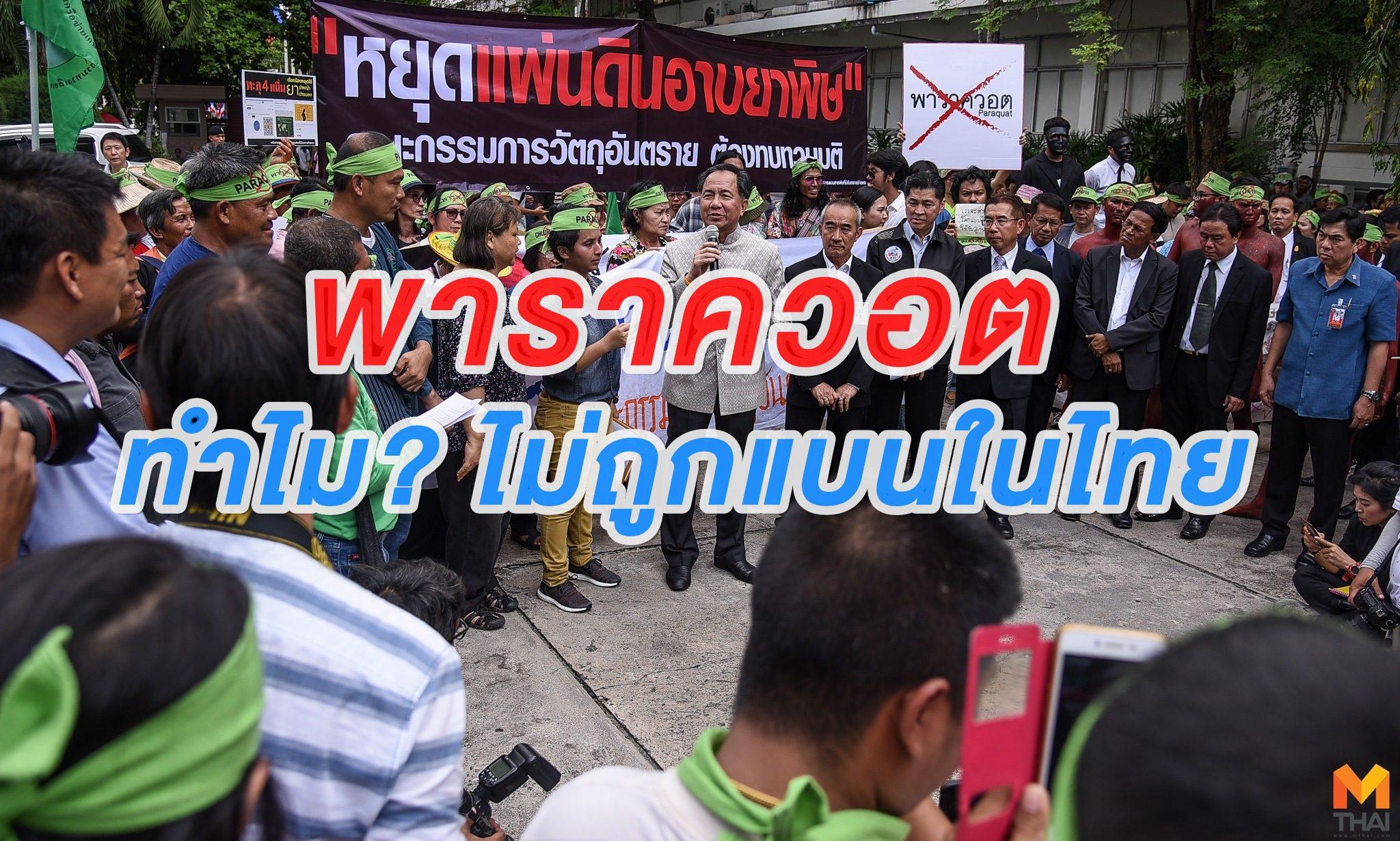 พาราควอต หรือ กรัมม็อกโซน ถูกแบนมากถึง 51 ประเทศ แต่ทำไมไทยเรายังใช้กันอยู่?