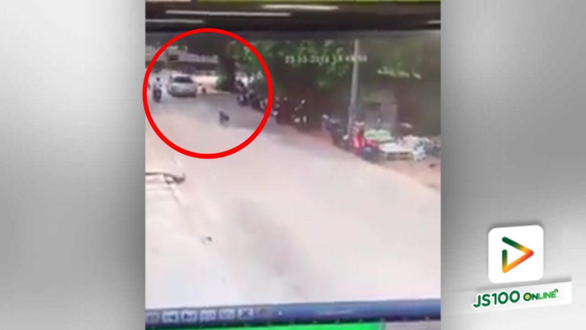 รถเก๋งขับชนกับสุนัขกลางถนน!! (24-03-61)