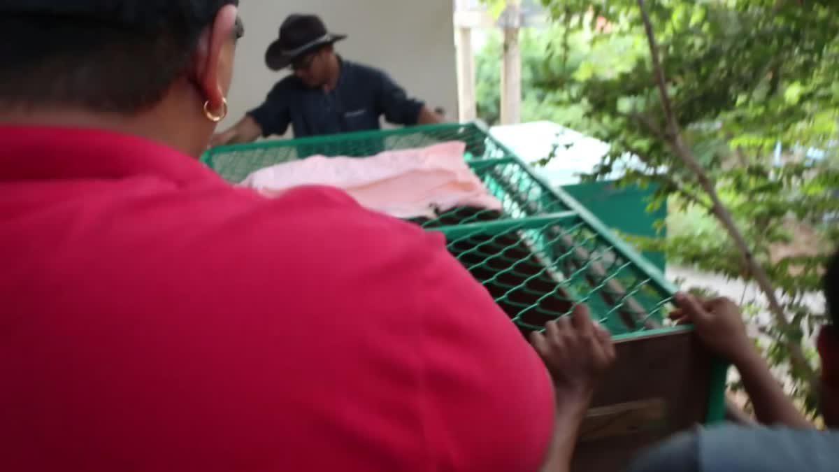 ชาวขอนแก่นตื่นเต้น แห่ต้อนรับ 'พี่ติ๊ก' แมวน้ำจากสวนสัตว์ดุสิต
