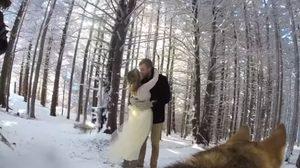 ชมคลิป งานแต่งงาน ที่น่ารักสุดขั้ว จากมุมมอง ของตากล้องน้องหมา