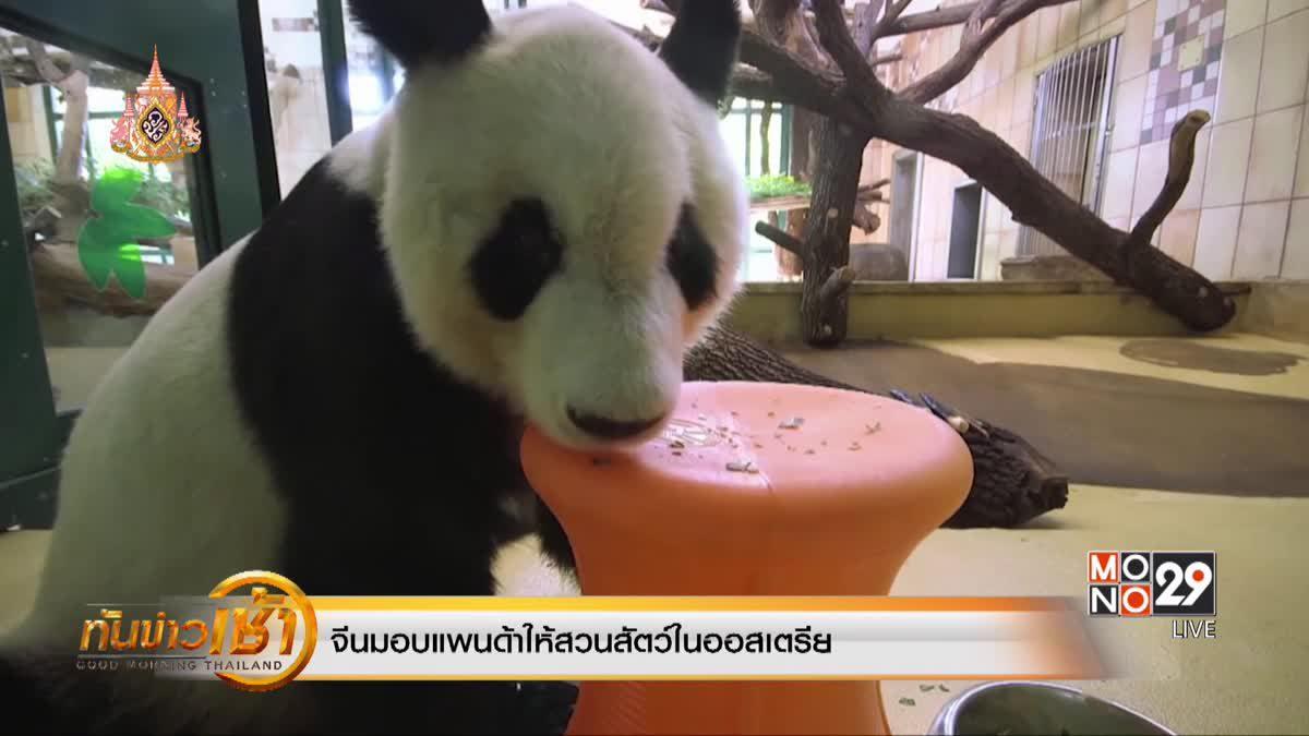 จีนมอบแพนด้าให้สวนสัตว์ในออสเตรีย